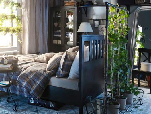 卧室植物的摆放风水注意事项