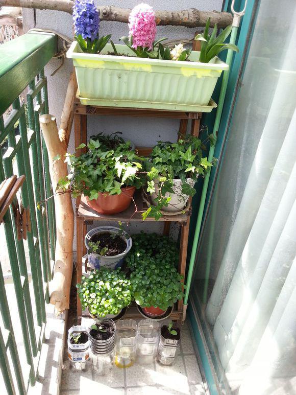 小户型也可以有大阳台!设计全攻略马住!