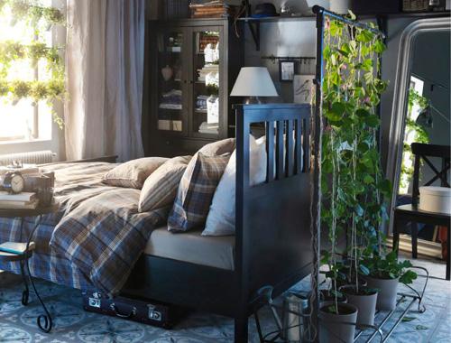 卧室植物风水讲究