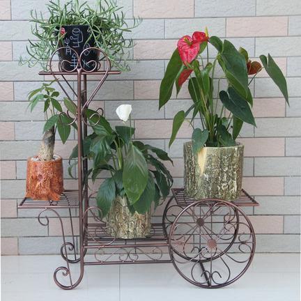 多彩缤纷的室内花架图片