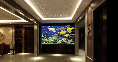 考量家居风水 进门玄关能放鱼缸吗