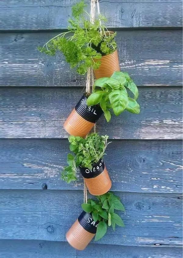 阳台种菜全攻略――让你当快乐的阳台农夫