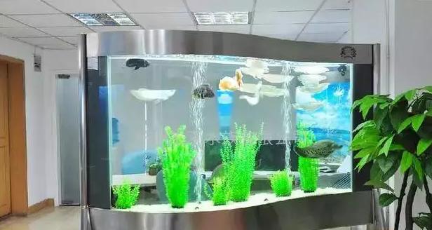 门口放鱼缸好吗?
