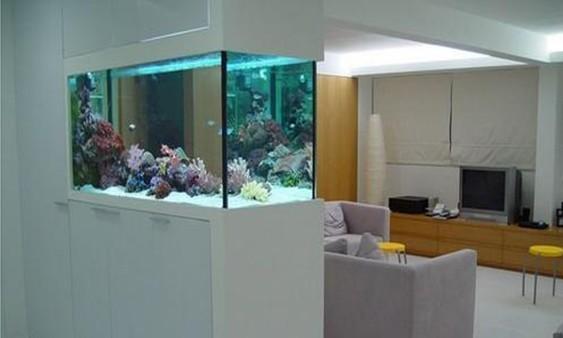 玄关鱼缸的摆放位置知多少?