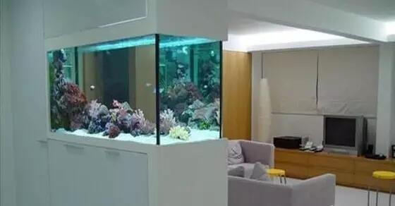 进门门口放鱼缸好吗 门口放鱼缸风水