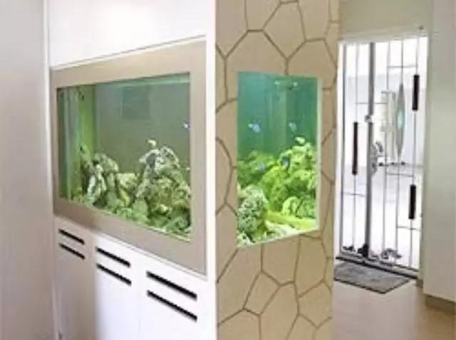 进门玄关的鱼缸摆放位置风水