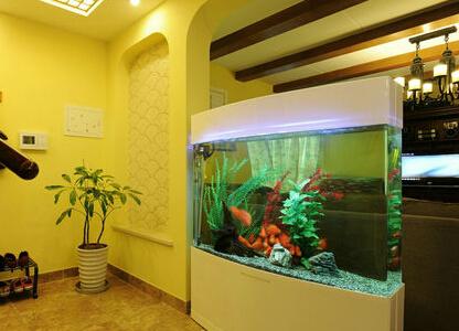 玄关处摆放鱼缸需要注意哪些事项