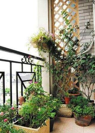 客厅小阳台独特的自然风你要这样设计!