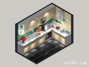 6�O精致高端L型收纳厨房_维意定制家具商城