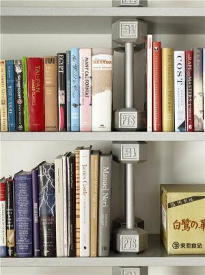 好看的最新矮书柜