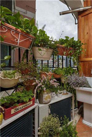 花草养殖阳台装饰