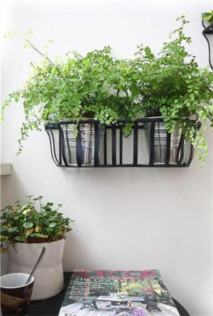 阳台装饰花草种植装饰