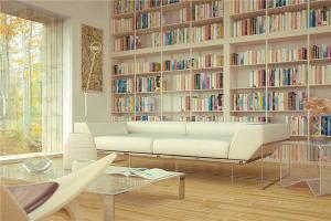 素色客厅书柜墙