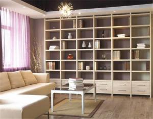简易小户型客厅书柜