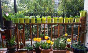 花园阳台装饰